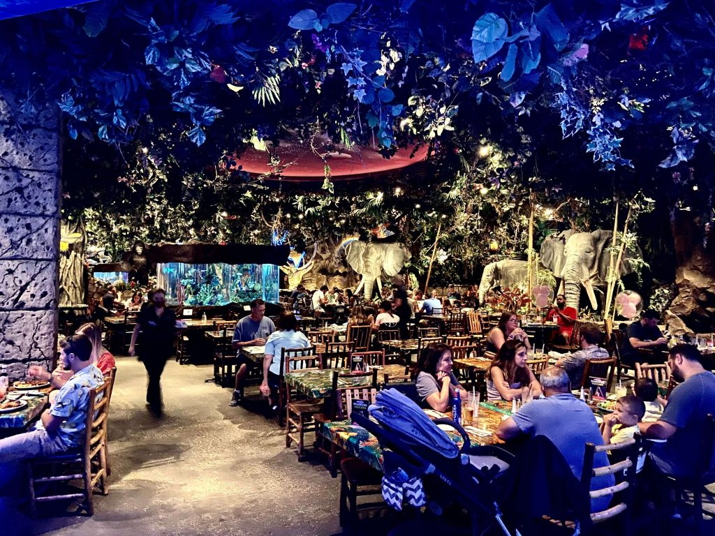 rainforest cafe at Disney Springs
