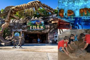 T REX Cafe Orlando, a Themed Restaurant in Orlando for Families