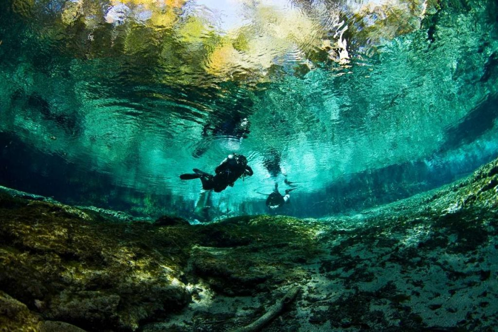 Ginnie Springs, Florida, springs in orlando fl