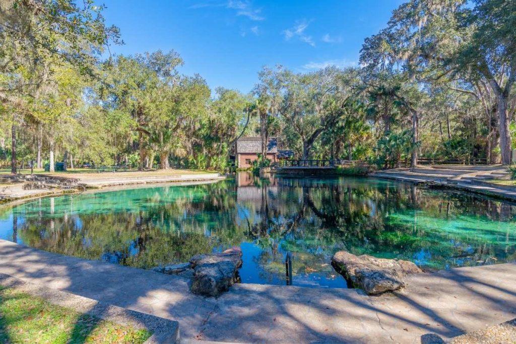 Swimming area at Juniper Springs