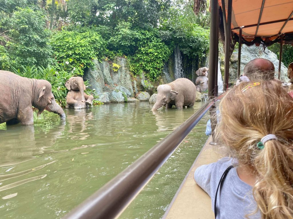 The Jungle Cruise lasts 10 minutes and glides through exotic rivers across Asia, Africa and South America - where hippos, gorilla's elephants, crocodiles and more will be pointed out to you.