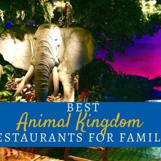Best Animal Kingdom Restaurants for Families, Disney World