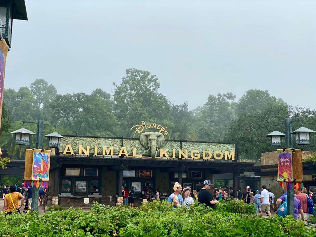 Best Animal Kingdom Breakfast for Families